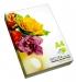 Набор двустороней цветной бумаги Spectra Color (супер микс IT 85B) для печати А4 80 г/м2 - 250л.